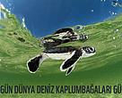 kaplumbaga, deniz