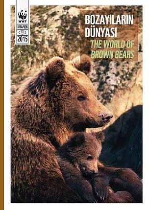 rapor, kitapcik, ayı, bozayi, bozayilarin dunyasi / ©: WWF-Türkiye