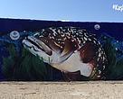 orfoz, grafiti, leo