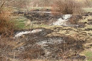 Habitat kaybı. Lalapaşa, Edirne