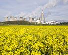 paris, iklim, termik, ingiltere, doğa, yeşillik, kömür, iklim degisikligi
