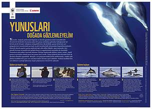 / ©: WWF-Türkiye