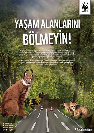 vasak, yasam alani, kafkasya, yavru, yol / ©: WWF-Türkiye